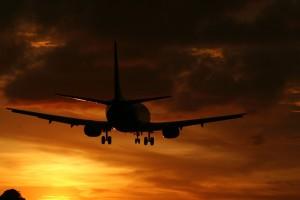 fly-897161_1280